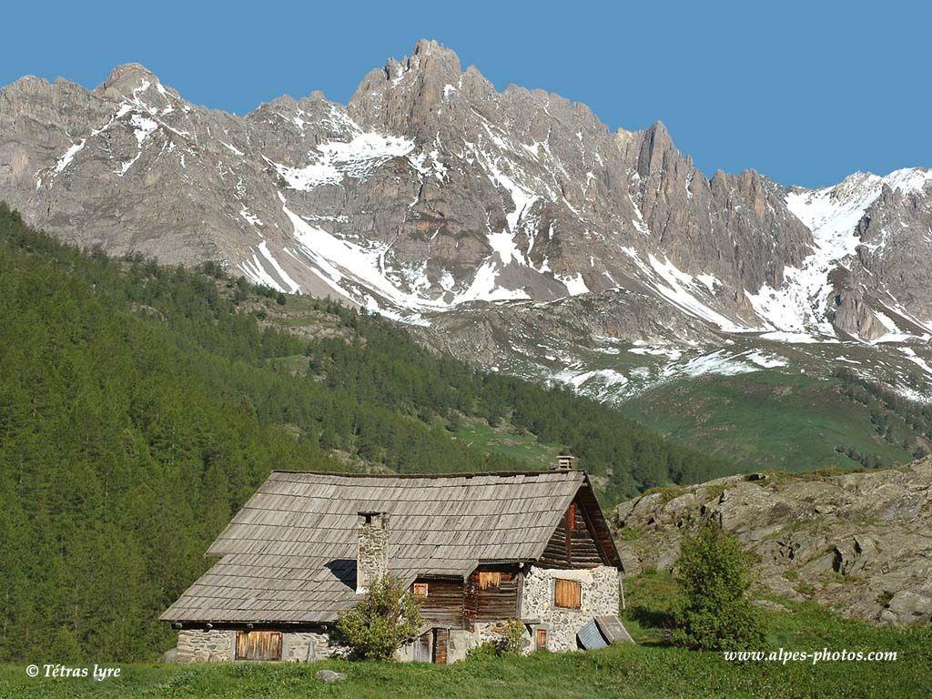 scenery wallpaper fond d 39 cran paysage de montagne en t. Black Bedroom Furniture Sets. Home Design Ideas
