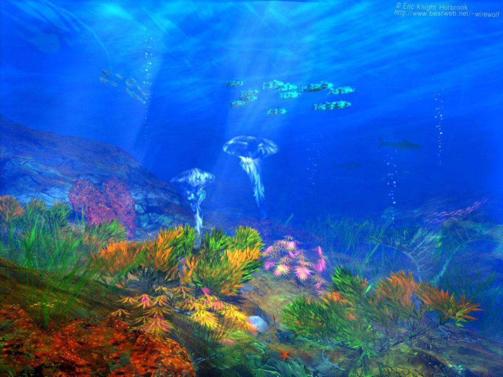"""Résultat de recherche d'images pour """"fonds d'écran fonds marins"""""""