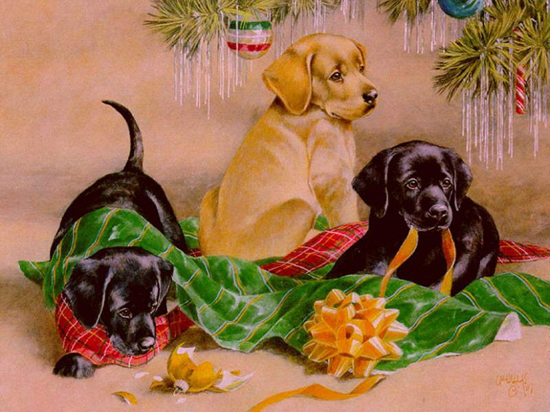 free christmas clip art with dogs - photo #40