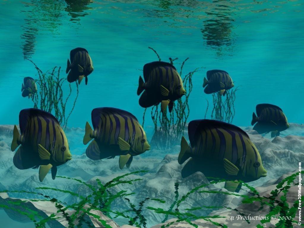 Fond d ecran de poissons page 2 for Image de fond ecran qui bouge gratuit
