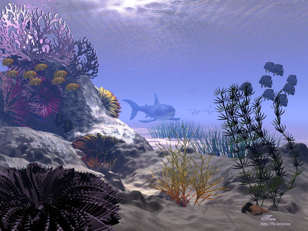 fond d ecran de poissons - Page 2